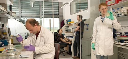 Bàn phòng thí nghiệm sinh học phân tử